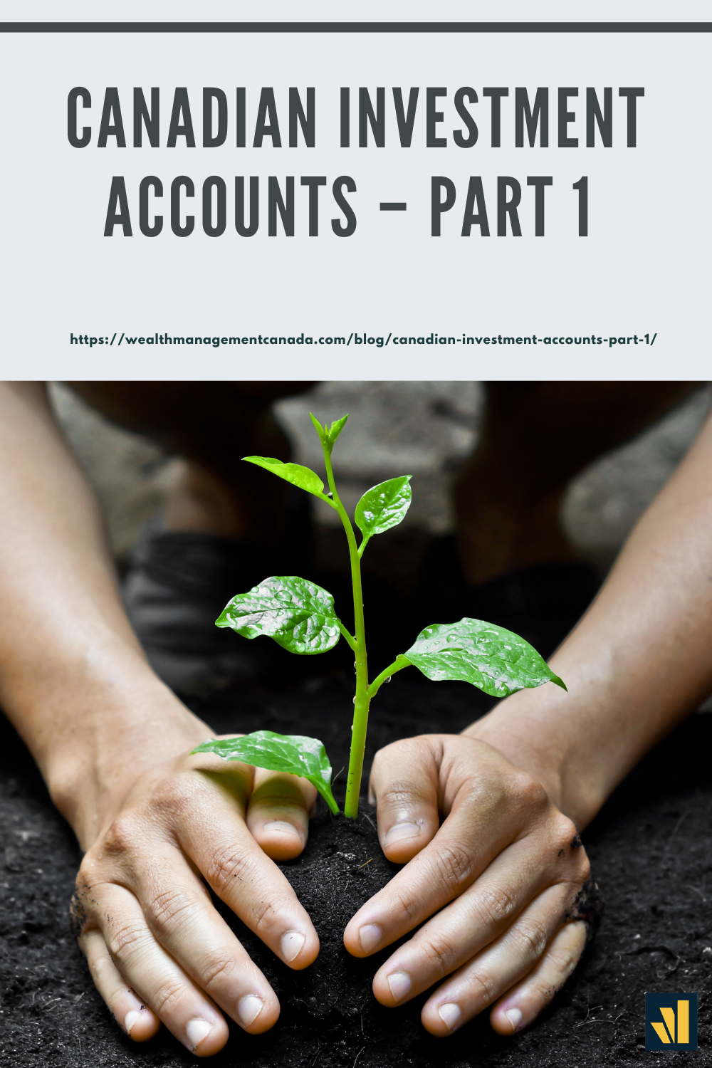 Canadian Investment Accounts